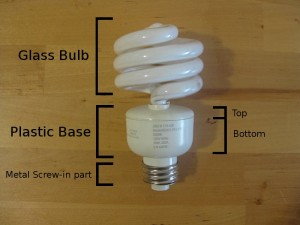 Parts of a screw-in flourescent bulb.